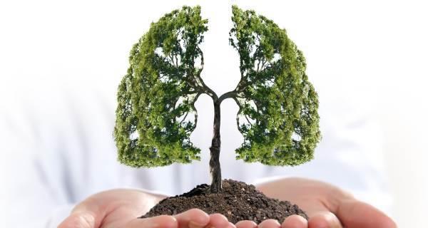 Khi bị ho, sốt và 3 dấu hiệu đi kèm cùng lúc, cẩn thận ung thư phổi đã vào giai đoạn nặng - Ảnh 4.
