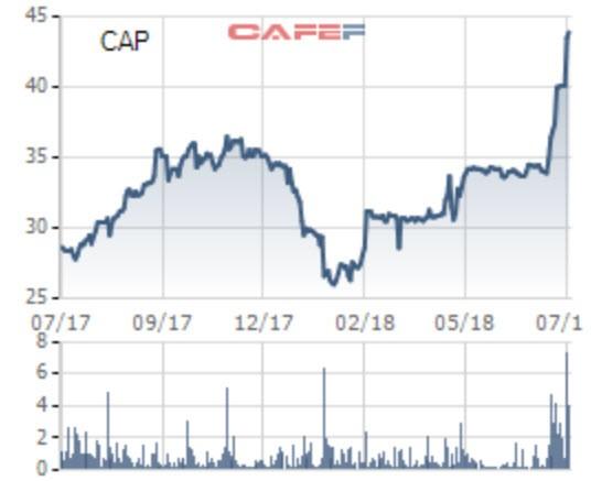 Nông sản Yên Bái (CAP) báo lãi quý 2 gấp hơn 20 lần cùng kỳ, cổ phiếu tăng 40% từ đầu năm - Ảnh 2.