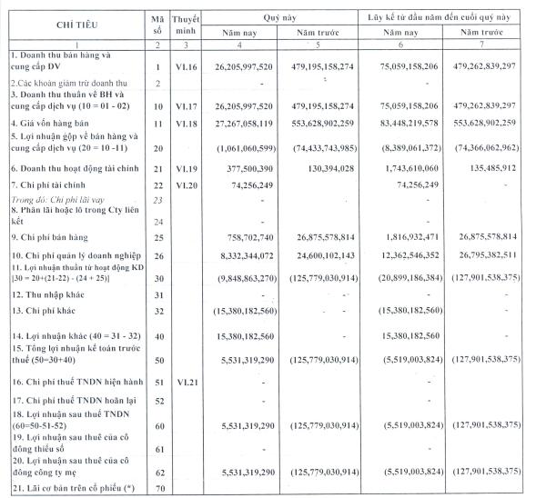 PVL: Quý 2 có lãi 5,5 tỷ đồng sau 6 quý liên tiếp thua lỗ trước đó - Ảnh 1.