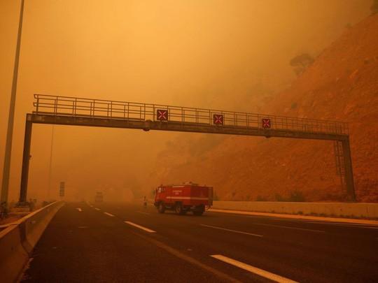 Cháy rừng Hy Lạp: Hàng chục người vượt không nổi biển lửa, chết gục trong sân nhà - Ảnh 7.