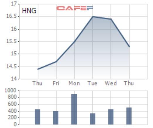 HAGL Agrico (HNG) : Sự cố ở Attapeu ảnh hưởng không nhiều tới doanh nghiệp - Ảnh 1.