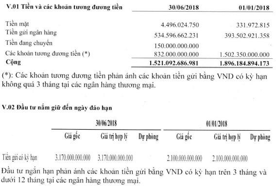 Đạm Cà Mau: Có 4.500 tỷ đồng gửi ngân hàng; LNST 6 tháng 413 tỷ đồng, giảm 27% so với cùng kỳ - Ảnh 2.