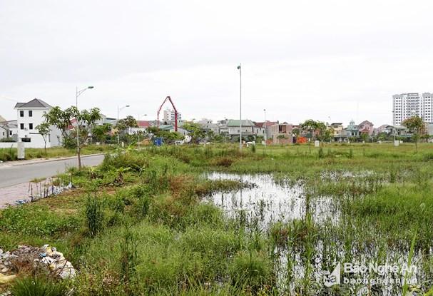 Giá đất, nhà mặt tiền ở TP. Vinh chạm ngưỡng 80 - 100 triệu/m2 - Ảnh 1.
