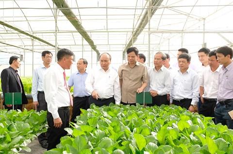 Sáng nay, Thủ tướng dự hội nghị thúc đẩy doanh nghiệp đầu tư vào nông nghiệp - Ảnh 1.