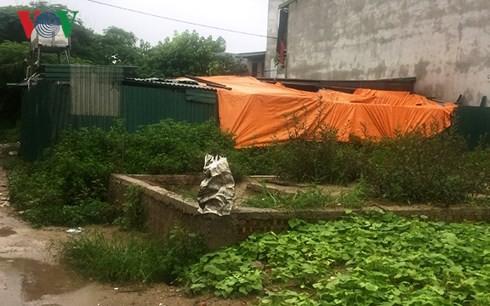 Đất nông nghiệp ở quận Hoàng Mai vẫn tiếp tục bị lấn chiếm - Ảnh 2.