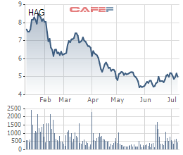 HAGL: Chưa thu xếp được tài chính, bầu Đức chỉ mua thành công 6,6% số cổ phiếu đăng ký - Ảnh 1.