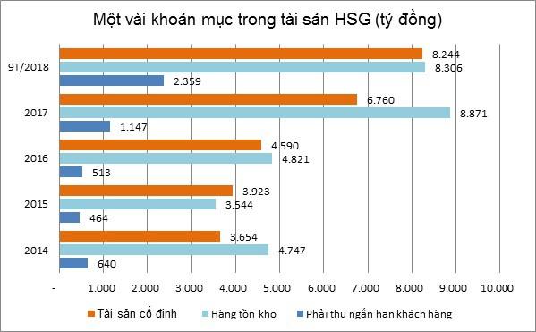 Dấu hỏi về khoản nợ vay 15.880 tỷ của Hoa Sen - Ảnh 3.