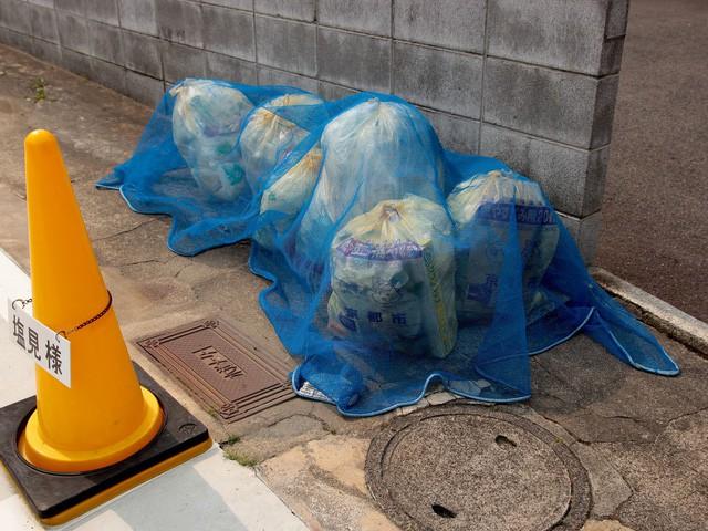 Xem cách người Nhật đổ rác, bạn sẽ hiểu tại sao cả thế giới phải thán phục quốc gia này - Ảnh 6.