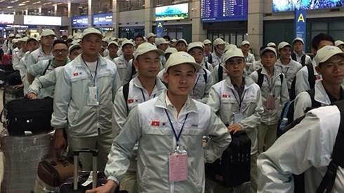 Cảnh giác với lừa đảo lao động Việt Nam đi làm việc tại Nhật Bản - Ảnh 1.