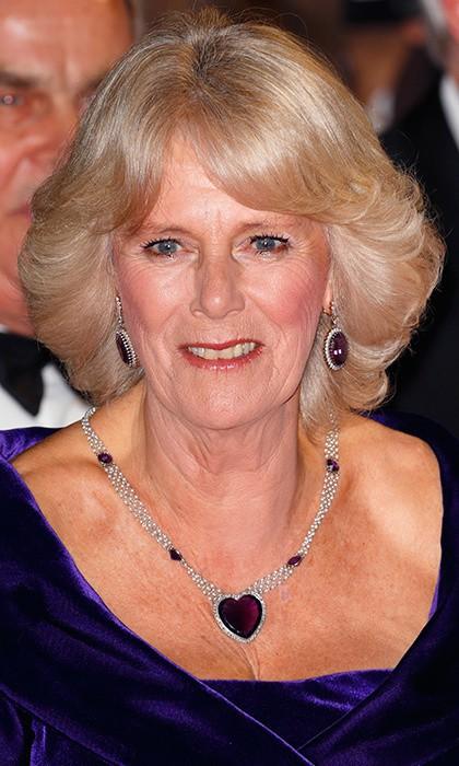 Từng giản dị đến mức nhàm chán, bà Camilla đã thay đổi phong cách thế nào để lọt top 30 nhân vật mặc đẹp nhất nước Anh? - Ảnh 20.