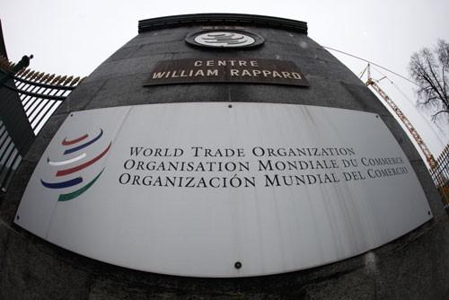 Mối nguy thật sự của thương mại địa cầu - Ảnh 1.