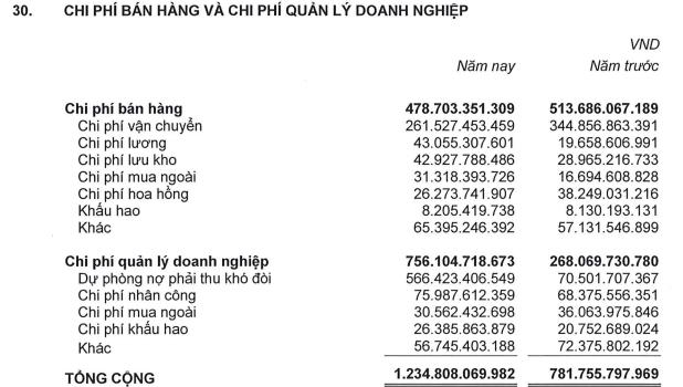 Thủy sản Hùng Vương (HVG) lỗ thêm 642 tỷ đồng sau kiểm toán năm tài chính 2016-2017; Nợ ngắn hạn vượt quá tài sản ngắn hạn - Ảnh 3.