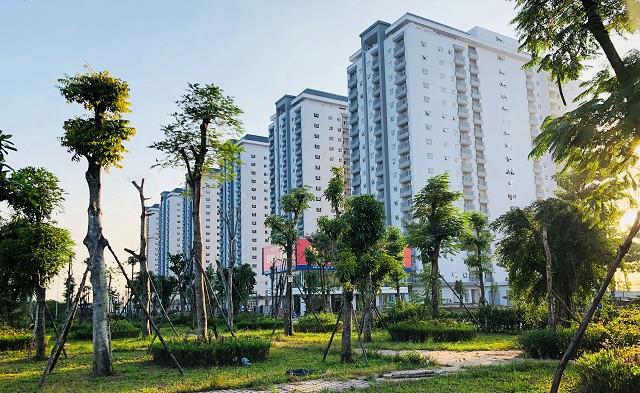 Lạc quan triển vọng thị trường bất động sản năm 2019 - Ảnh 1.