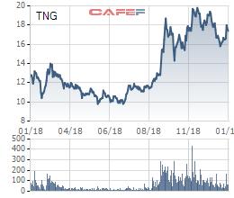 Quý 4/2018, TNG lãi 50 tỷ đồng tăng 83% so với cùng kỳ - Ảnh 1.
