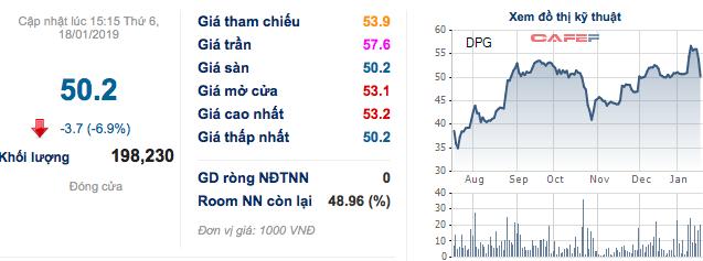Đạt Phương (DPG): Chỉ hoàn thành 66% kế hoạch lợi nhuận, Chủ tịch dùng bất động sản cá nhân bảo lãnh khoản vay ngân hàng - Ảnh 3.