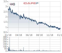 HKB báo lỗ 104 tỷ đồng trong quý 4/2018, cổ phiếu rơi xuống 800 đồng - Ảnh 1.