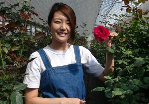 Làm giàu từ hoa hồng organic - Ảnh 1.