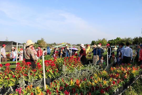 Chưa Tết, làng hoa lớn nhất miền Tây đã nườm nượp khách - Ảnh 11.
