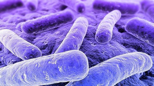 Các nhà khoa học tạo ra chất kháng sinh mới mạnh hơn 500 lần, tiêu diệt được 49 chủng siêu vi khuẩn kháng thuốc - Ảnh 1.