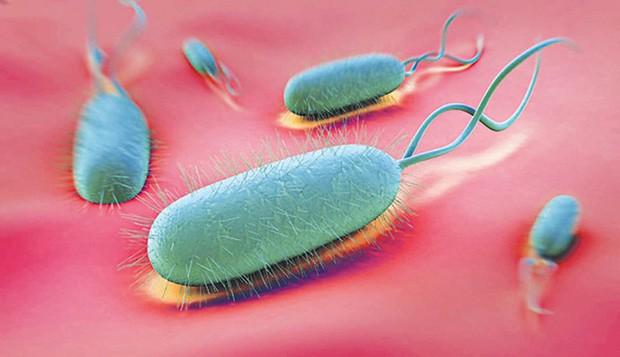 Gia đình 7 người đồng loạt nhiễm chất gây ung thư loại 1, nhà bạn cũng có thể tiềm ẩn chất độc hại này - Ảnh 2.