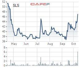 Mía đường Sơn La (SLS) báo lãi ròng quý 1 giảm sút 36% so với cùng kỳ - Ảnh 2.