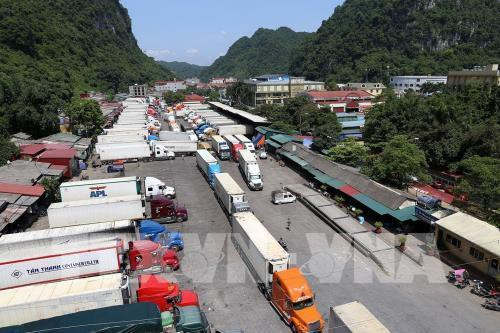 Trung Quốc thay đổi, 500 xe container nông sảntắc cứng ở Tân Thanh - Ảnh 1.