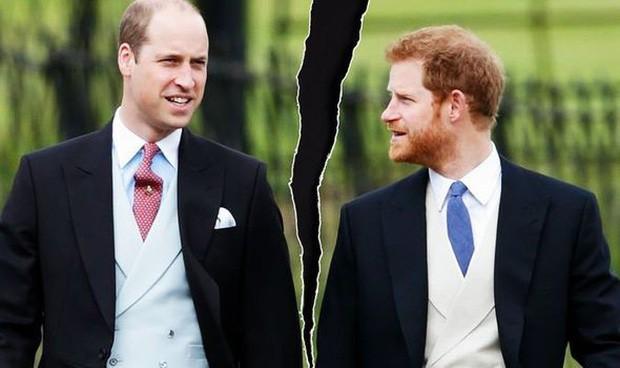 Hoàng tử Harry thừa nhận mối quan hệ rạn nứt với anh trai: Chúng tôi đang đi trên con đường riêng của mình? - Ảnh 2.