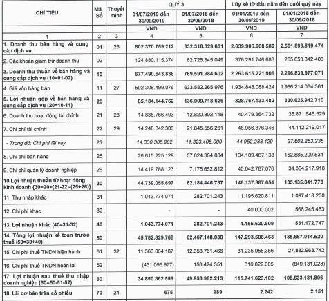 Pinaco (PAC) lãi trước thuế 147 tỷ đồng trong 9 tháng, hoàn thành 81% kế hoạch năm - Ảnh 1.