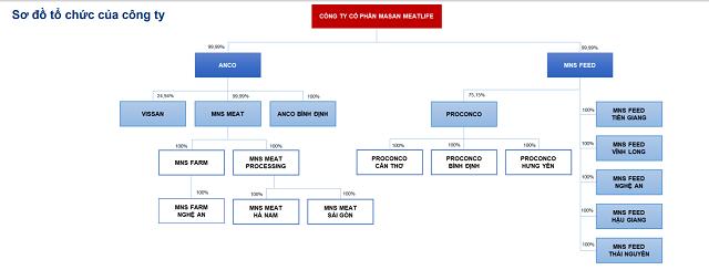 Masan MEATLife trước khi lên UPCoM: Lợi nhuận giảm, nhiều thách thức cho mảng thịt - Ảnh 3.