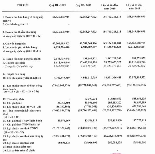 Quý 3/2019 lỗ thêm 7 tỷ đồng, DDM chìm đắm trong thua lỗ 30 quý liên tiếp - Ảnh 1.