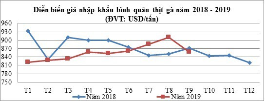 Gà Mỹ và Brazil về Việt Nam giá chưa đến 20.000 đồng/kg, Bộ Công Thương khuyến cáo người dân cân nhắc tái đàn - Ảnh 2.