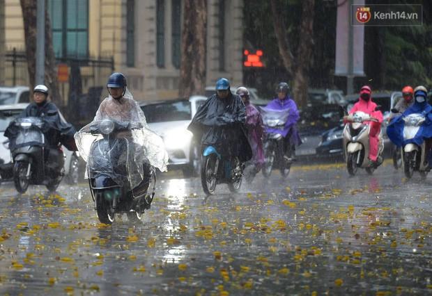 Chùm ảnh: Hà Nội đón cơn mưa rào sau nhiều ngày hanh khô, chỉ số chất lượng không khí được cải thiện - Ảnh 2.