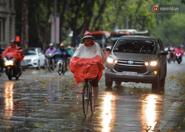Chùm ảnh: Hà Nội đón cơn mưa rào sau nhiều ngày hanh khô, chỉ số chất lượng không khí được cải thiện - Ảnh 3.