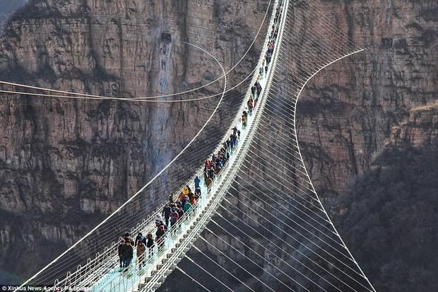 """Nóng: Hơn 32 công trình cầu kính nổi tiếng của Trung Quốc bất ngờ đóng cửa, trong đó có cả """"thiên đường sống ảo"""" Trương Gia Giới - Ảnh 5."""