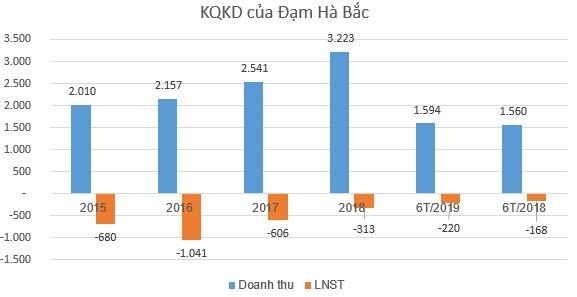 Đạm Hà Bắc (DHB) có CEO mới trong bối cảnh thua lỗ triền miên, âm vốn chủ - Ảnh 1.