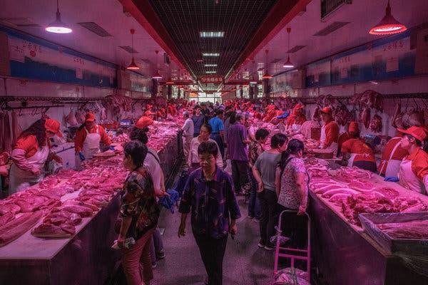 Trung Quốc dự trữ thịt lợn từ bao giờ? Thịt lợn dự trữ có vị như thế nào? - Ảnh 1.