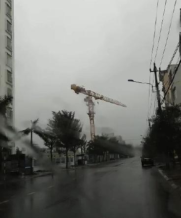 Cần trục xây dựng chung cư 32 tầng quay tít, người dân Quy Nhơn sợ hãi trước bão Nakri, Giám đốc Sở nói doanh nghiệp không đồng ý hạ cẩu - Ảnh 2.