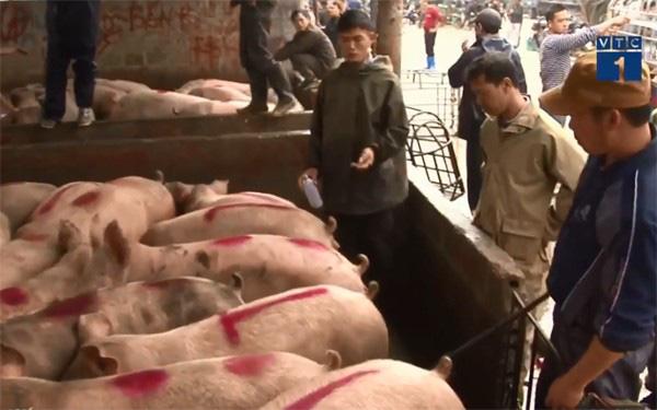Liệu thịt lợn có tiếp tục lên cơn sốt giá? - Ảnh 1.
