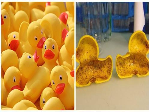 Cảnh báo: Một số đồ chơi trẻ em bằng nhựa ở Thái Lan được phát hiện chứa lượng lớn hóa chất ảnh hưởng đến sinh sản và nguy cơ mắc ung thư - Ảnh 3.