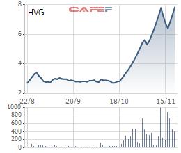 Thuỷ sản Hùng Vương (HVG) ngập ngụa với lỗ, cổ phiếu vẫn liên tục kịch trần, giao dịch đột biến - Ảnh 2.