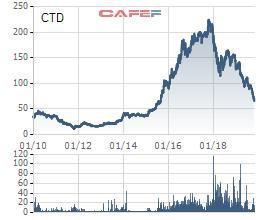Conteccons (CTD) bị xử phạt vi phạm thuế hơn 2 tỷ đồng, cổ phiếu tiếp tục lao dốc - Ảnh 1.