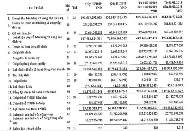 Điện Gia Lai (GEG) báo lãi đột biến 217 tỷ đồng trong 9 tháng, vượt xa kế hoạch năm - Ảnh 1.