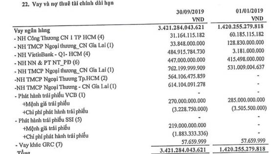 Điện Gia Lai (GEG) báo lãi đột biến 217 tỷ đồng trong 9 tháng, vượt xa kế hoạch năm - Ảnh 2.