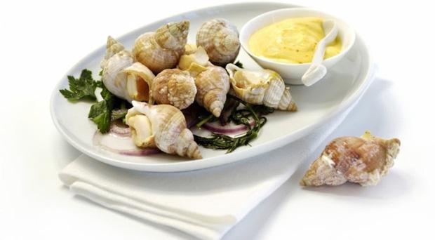 Ốc Bulot Pháp: Từng chả ai ăn, dùng làm mồi cho cá đến chỗ trở thành thực phẩm đắt cả nửa triệu bạc vẫn hết hàng - Ảnh 1.