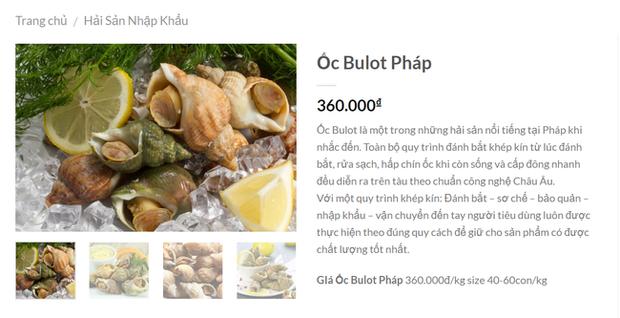 Ốc Bulot Pháp: Từng chả ai ăn, dùng làm mồi cho cá đến chỗ trở thành thực phẩm đắt cả nửa triệu bạc vẫn hết hàng - Ảnh 2.