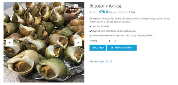 Ốc Bulot Pháp: Từng chả ai ăn, dùng làm mồi cho cá đến chỗ trở thành thực phẩm đắt cả nửa triệu bạc vẫn hết hàng - Ảnh 6.