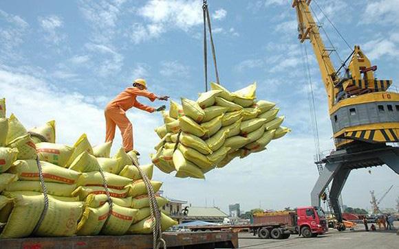 Năm 2019, xuất khẩu gạo sụt giảm 300 triệu USD - Ảnh 1.