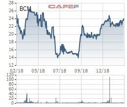 Becamex IDC trình loạt phương án tăng vốn điều lệ gần gấp đôi, lên 20.000 tỷ đồng - Ảnh 1.