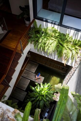 Xanh mướt tầm mắt với những khu vườn tại gia - Ảnh 7.