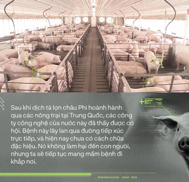 Trung Quốc chống lại dịch tả lợn châu Phi bằng công nghệ nhận diện mặt lợn như thế nào? - Ảnh 1.